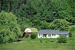 Homestead and barn, near the Blue Ridge Parkway, Appalachian Mountains, North Carolina, United States of America, North America
