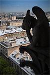 Gargoyle on Notre Dame Overlooking Paris, France