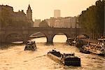 La Seine, Pont Neuf et Ile de la cité, Paris, France