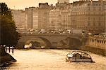 Pont Neuf pont sur la Seine, Paris, France