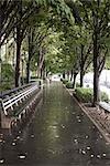 Benches in Battery Park, Manhattan, New York City, New York, USA