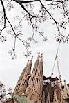 La Sagrada Familia, Barcelona, Katalonien, Spanien