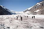 People Walking on Glacier, Columbia Icefield, Alberta, Canada