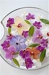 Orchidées dans un bol