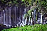 Chutes Shiraito, Fujinomiya, Parc National de Fuji-Hakone-Izu, préfecture de Shizuoka, Japon