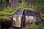 Verlassene Fahrzeug, Valdes Insel, Gulf Islands, British Columbia, Kanada