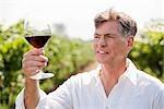 Porträt des Mannes im Weinberg, die Prüfung von einem Glas Wein