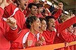 Fans feiern bei Fußballspiel