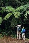 TOURISTS BIRD WATCHING IN MONTEVERDE CLOUD FOREST RESERVE COSTA RICA