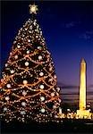 WASHINGTON MONUMENT À WASHINGTON DC ET ARBRE DE NOËL NATIONAL NUIT