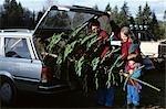 FAMILY OF THREE PUTTING CHRISTMAS TREE INTO CAR