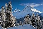 Winterszene, Arosa, Schweiz