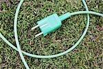 Fiche sur l'herbe