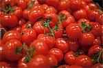 Gros plan de tomates