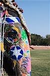 Gros plan d'un éléphant peint, Festival de l'éléphant, Jaipur, Rajasthan, Inde