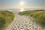 Sylt, North Frisian Islands, Nordfriesland, Schleswig-Holstein, Germany