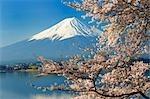 Mt.Fuji, Lake Kawaguchi, Japan