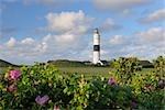 Lighthouse, Kampen, Sylt, North Frisian Islands, Nordfriesland, Schleswig-Holstein, Germany