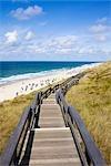 Boardwalk to Beach, Sylt, Schleswig-Holstein, Germany