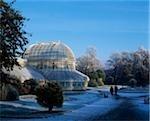 Belfast, Botanic Gardens In The Snow