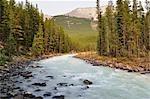 Sunwapta River, Jasper National Park, Alberta, Canada