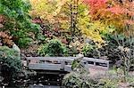 Détail du Dr Sun Yat-Sen Park, Vancouver, Colombie-Britannique, Canada