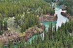Yukon River and Miles Canyon, Near Whitehorse, Yukon Territory, Canada