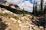 Moraine Rockpile at Moraine Lake, Banff National Park, Alberta, Canada