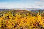 Monts Ogilvie, Tintina tranchée, territoire du Yukon, Canada