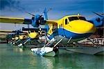 Seaplanes at Male Airport, Hulhule Island, North Male Atoll, Maldives