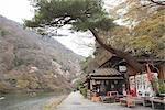 A Japanese cafe, Arashiyama in Spring, Kyoto, Japan