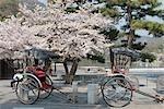 Richshaws at Arashiyama, Kyoto, Japan