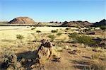 View of  harsh landscape, Sesfontein area, Kaokoland, Namibia