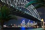 Palmiers qui bordent le rivage à Milsons Point cadre le Sydney Harbour Bridge et l'horizon de Sydney centrale