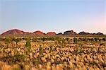 Australie, Northern Territory. Les Olgas, autrement connues comme Kata Tjuta (ce qui signifie « plusieurs têtes »), au lever du soleil. Cette gamme se compose de 36 dômes arrondis avec les plus grands 546 mètres de haut.