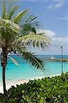 Vue le long de la rive vers le phare sur Little Whale Cay