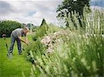 Jardinier tendant frontière