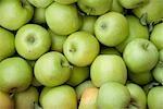 Bio Äpfel, Penticton, Okanagan Valley, British Columbia, Kanada