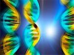 DNA (deoxyribonucleic acid) molecules, computer artwork.