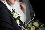 Mariée et le marié, Salzbourg, Land de Salzbourg, Autriche