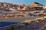 Desert road, USA