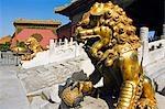 Eine goldene Löwe Statue am verbotenen Stadt Palastmuseum, Zijin Cheng, Beijing, China