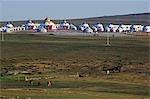 Xilamuren de Chine, Province de Mongolie intérieure des Prairies. Chevaux et tentes yourte nomade au loin.