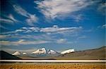 Chili, les marais salants de Salar de Surire. La région est abrite migration Flamingo, vigogne, alpaga & Lama.