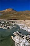 Hot springs near the salt flats of Salar de Surire,Chile.