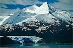Chili, région XII, Tierra del Fuego. Mt Buckland et Gallegos Glacier, Cordillère Darwin.