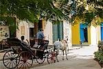 Cuba, la Havane. Calèche sur Cale Mercaderes, la Havane
