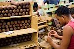 Cuba,Havana. Hand rolling cigars,The H.Upmann Cigar Factory,Havana,Cuba