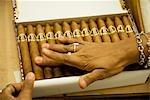 Cuba,Havana. Grading,sorting and packaging handmade cigars,The H.Upmann Cigar Factory,Havana,Cuba