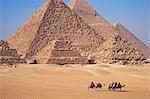 Chameaux passe devant les pyramides de Gizeh, Egypte